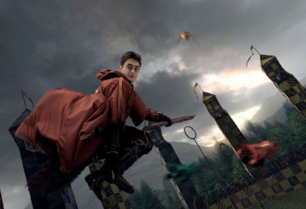 Harry_playing_Quidditch